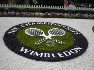 wimbledon - grassdraw