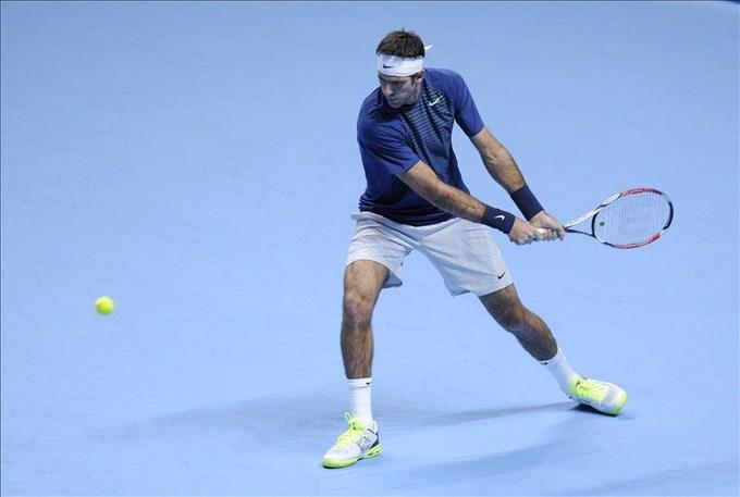 La AAT niega haber presionado a Del Potro y lamenta su ausencia en la Copa Davis. EFE.