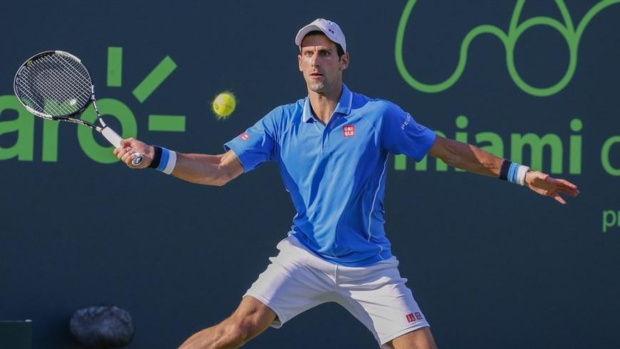 Novak portada