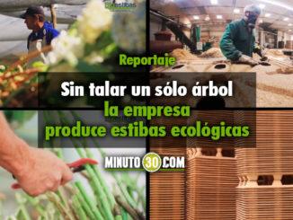 Fotos/Captura de Pantalla Vídeo Bioestibas