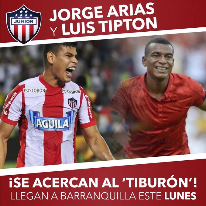 Arias Tipton Copiar