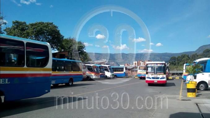 Paro buses Altavista