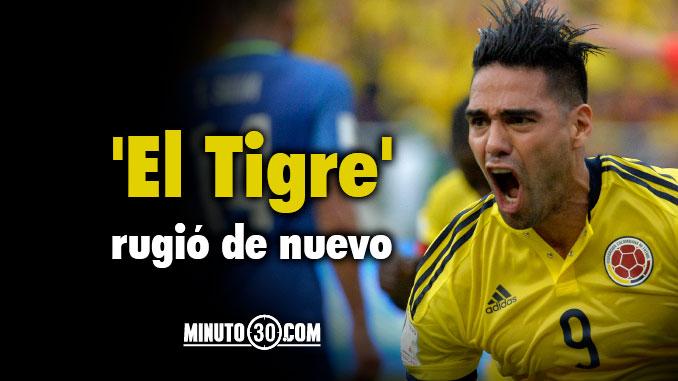 Falcao Tigre Garcia