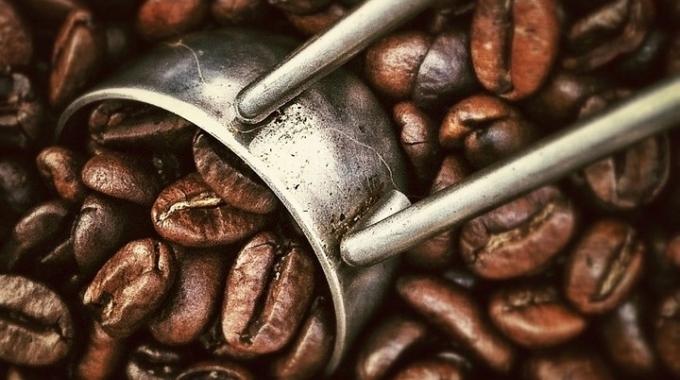 cafe alza