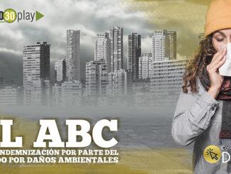Portada EL ABC DE LA INDEMNIZACI%C3%93N POR PARTE DEL ESTADO POR DA%C3%91OS AMBIENTALES 678
