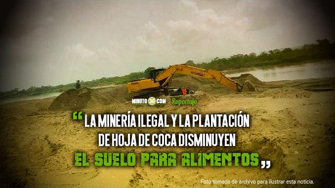 Por culpa de la delincuencia Antioquia no produce la misma cantidad de alimentos y debe traerla de otras partes