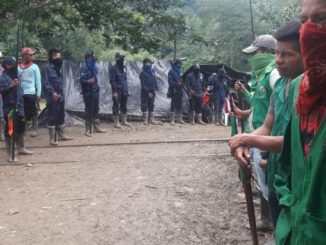 indigenas colombianos minga Copiar