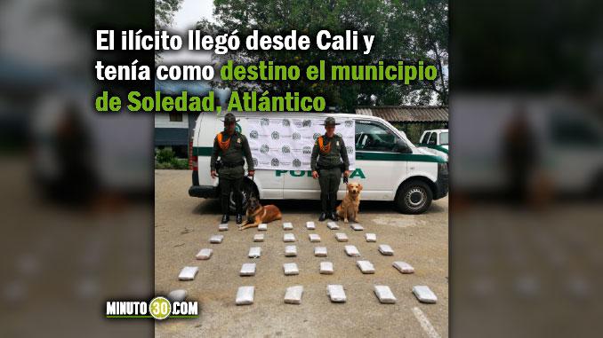 Incautacion de marihuana en Medellin