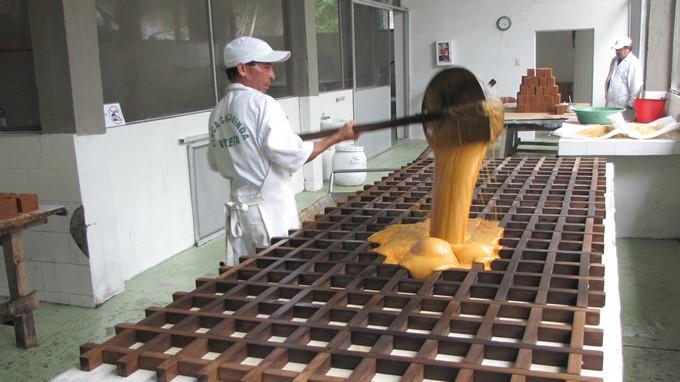 Productores de panela