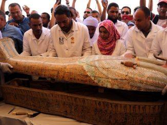 19 10 19 momias egipto