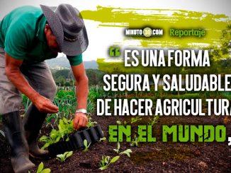 El oriente antioqueno es la subregion con mejores practicas de agricultura organica