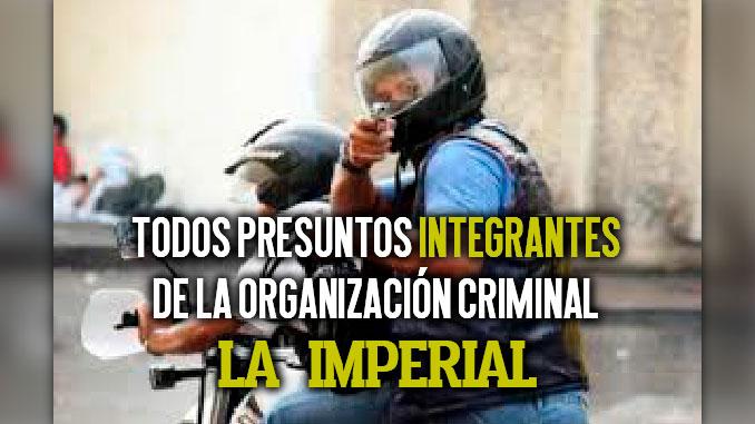 Todos presuntos integrantes de la organizacion criminal La Imperial