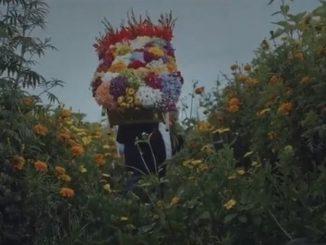 feria delas flores