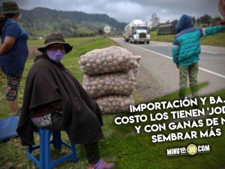 El drama de los cultivadores de papa en Colombia que venden los bultos a lo que les ofrezcan