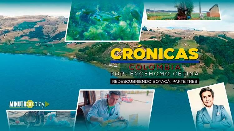 cronica 3 boyaca 750