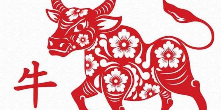 Ano Nuevo Chino del Bufalo