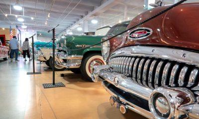 Museo Dauer