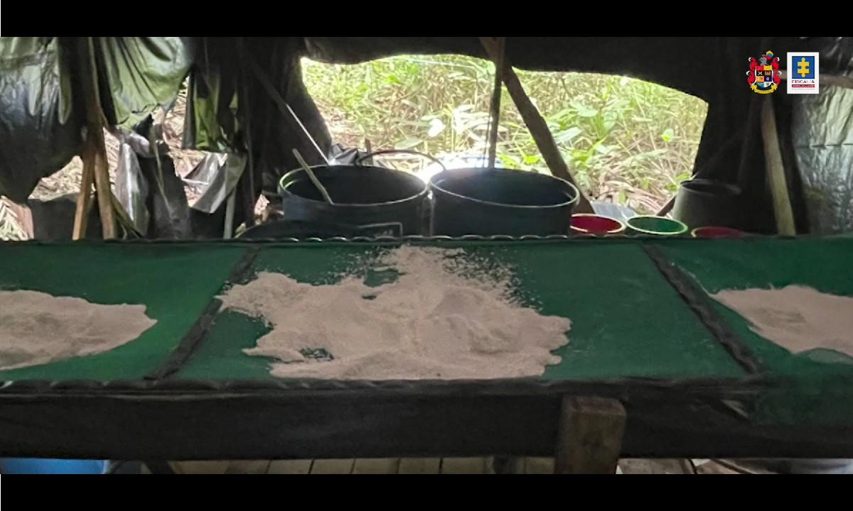 [Video] Destruyeron cerca de 4 toneladas de Cocaína que pertenecería a las disidencias de las Farc