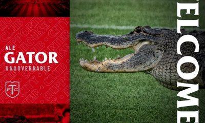 Cocodrilo interrumpio la practica del Toronto FC Copiar