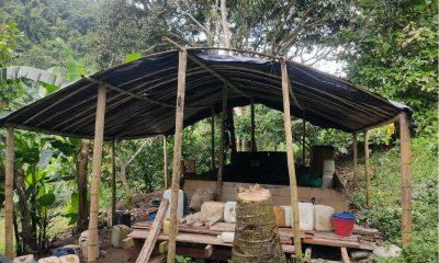 22 laboratorios para coca fueron destruidos en un municipio del Chocó