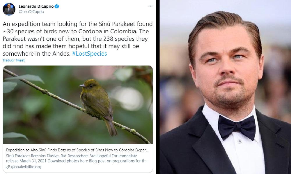 Leonardo DiCaprio está encantado con el hallazgo de nuevas especies de aves en Córdoba