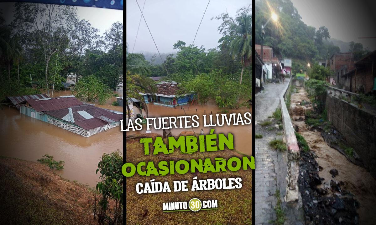 [Video] Hasta el techo se inundaron algunas vivienda en Dabeiba