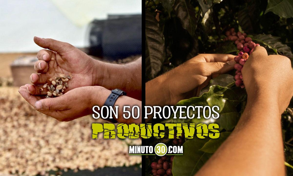 Gobierno invierte casi 3 mil millones en proyectos cafeteros para excombatientes