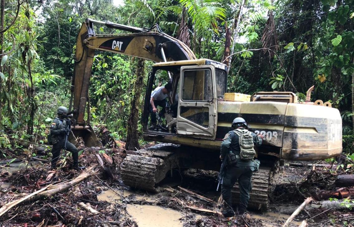 Fiscalía-cedro Rojo-deforestación