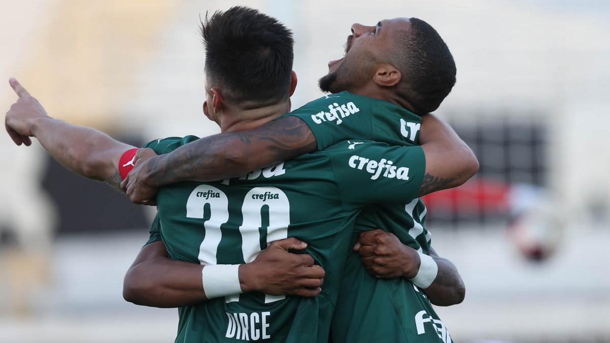 Palmeiras Copiar