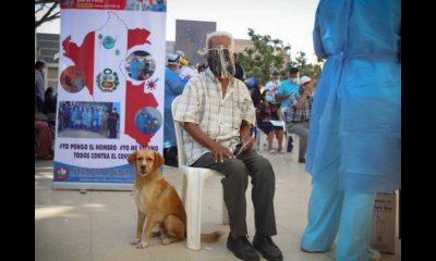 Abuelito fue a vacunarse contra el Covid y llevó a su más fiel amigo, su perrito