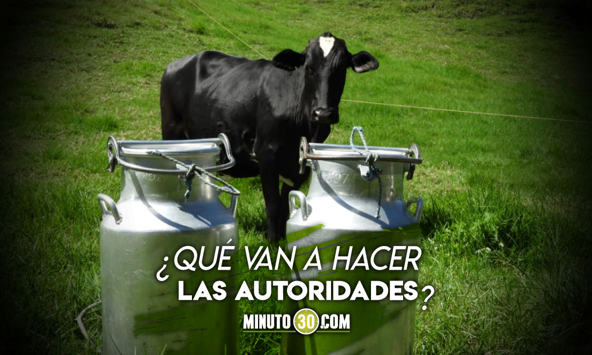 Por bloqueos están en peligro de pérdida más de 2 millones de litros de leche en Antioquia