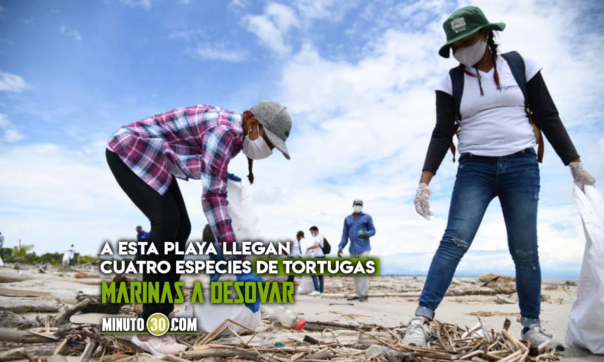 [Fotos] Ambientalistas limpiaron playas de Necoclí, Antioquia