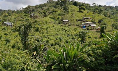 Otro indígena fue víctima de una mina en Antioquia