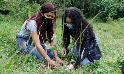 Manizales celebra el Día Mundial del Medio Ambiente