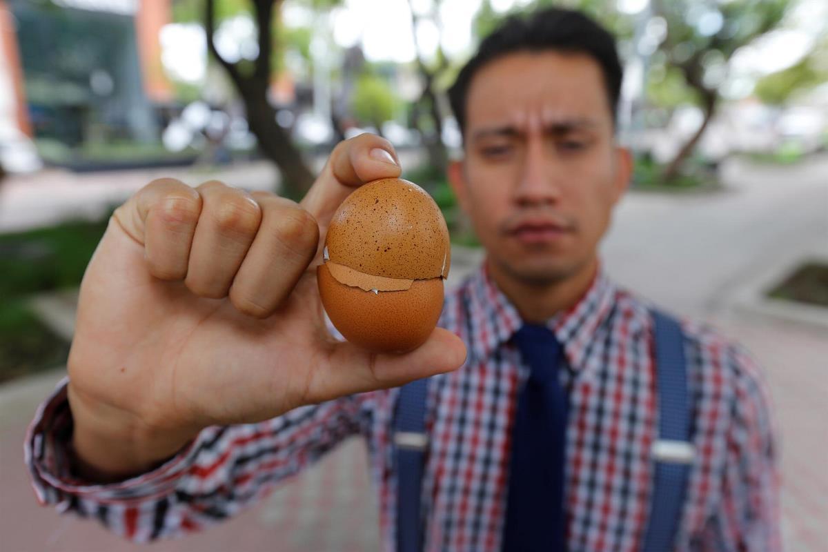 cascara de huevo3