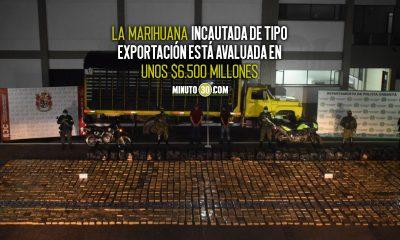 Incautan más de 3 toneladas de marihuana en el Caquetá