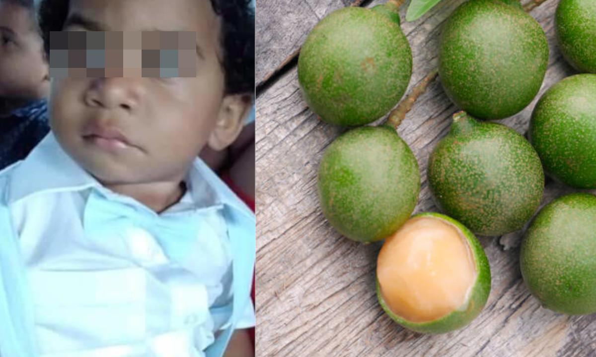 ¡Qué pesar! Un niño de un año se ahogó con una 'pepa' de mamoncillo