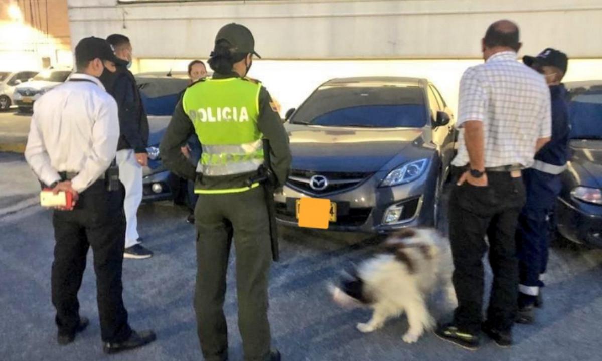 Dejaron un perrito encerrado en un carro mientras se iban de 'borondo' al centro comercial