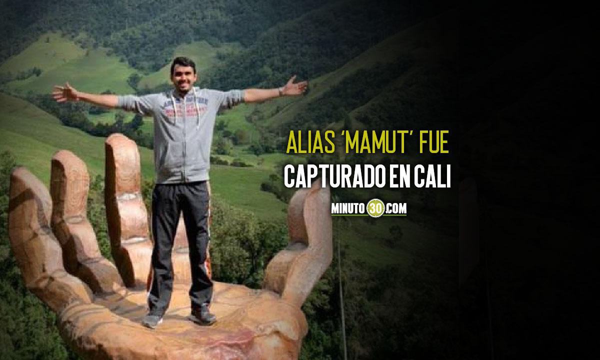 Alias Mamut