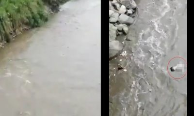 [Video] Vieron un cuerpo flotando en el Río Medellín