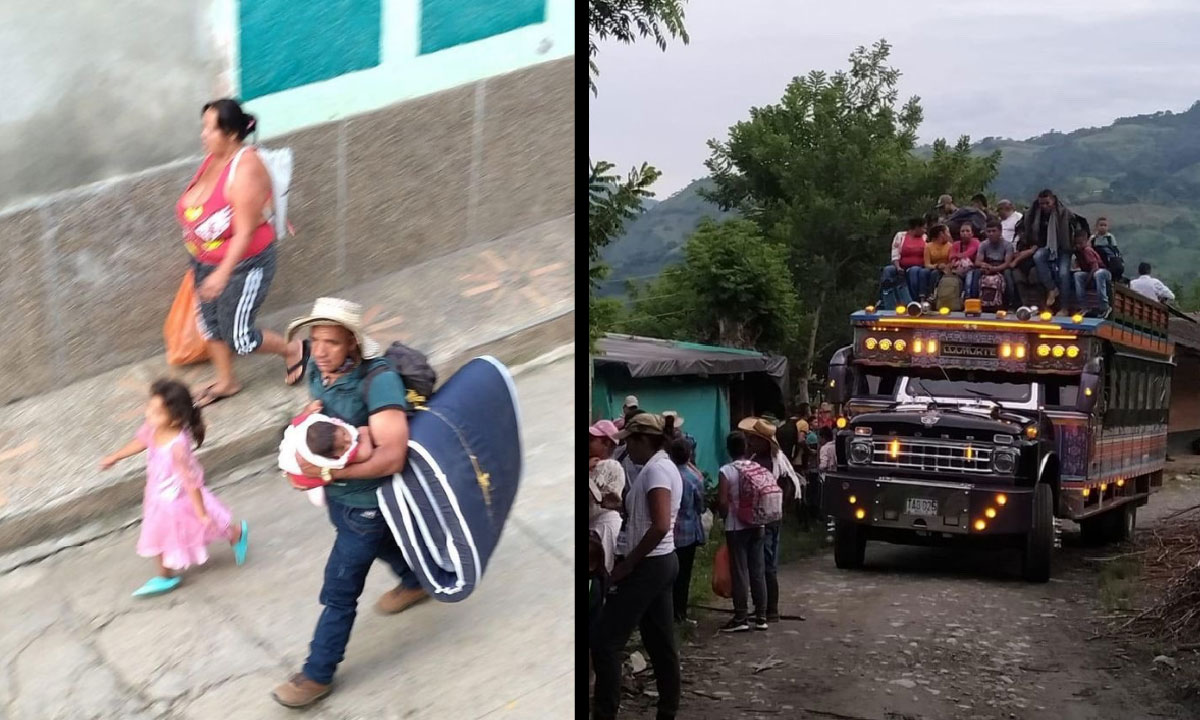 Reportan 1548 familias desplazadas en Ituango