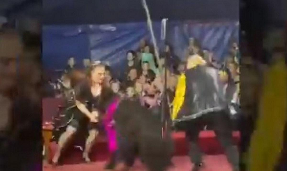 show oso rusia