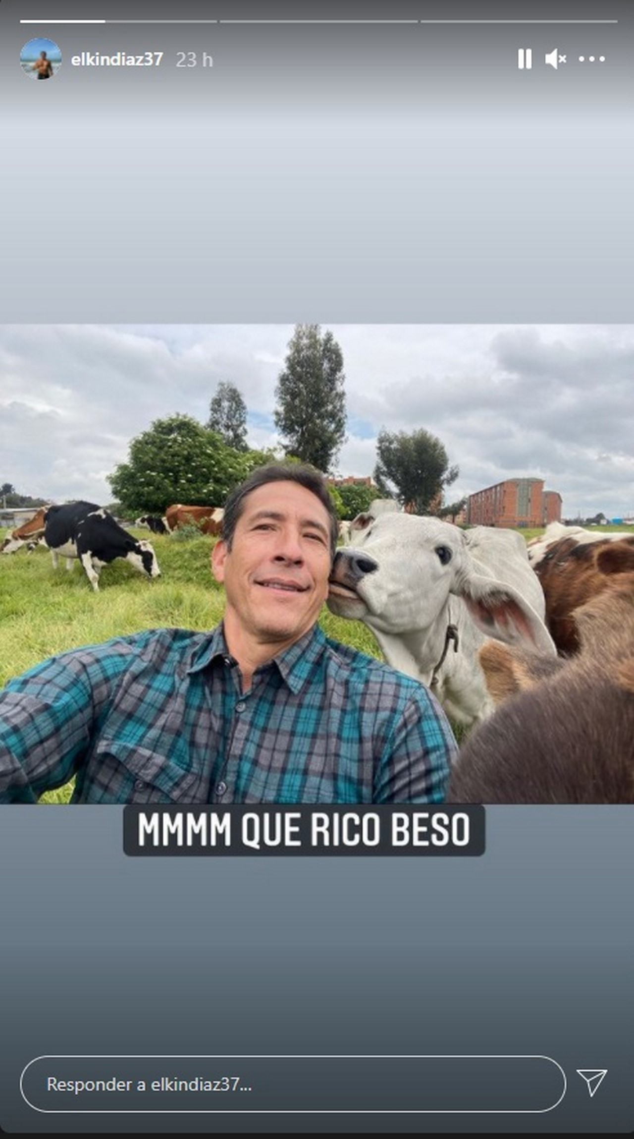 Elkin Diaz vaca 3