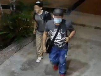 [Video] Denuncian que estas 'ratas' han desocupado varios apartamentos y oficinas en Laureles