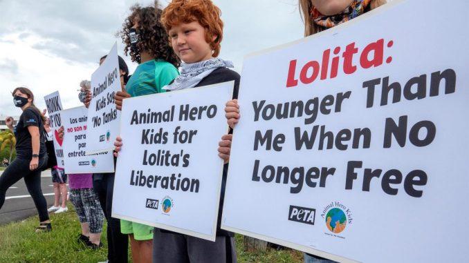 lolita free