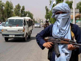 talibanes bin laden