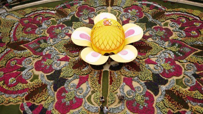 tapete de flores medellin3