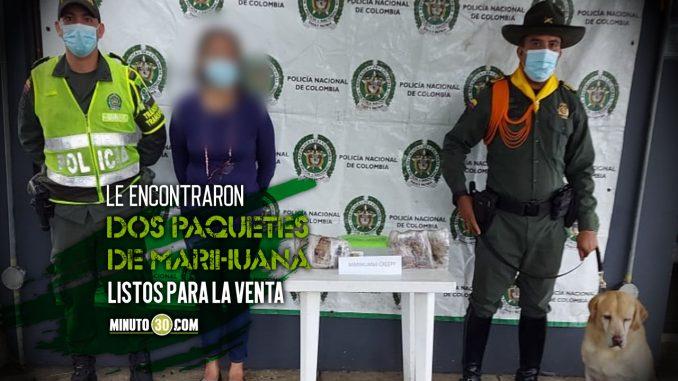 Esta señora salió de Medellín cargada con 'Creepy' pero en el bus un perrito la delató