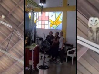 bailando lechuza canto iglesia 1 1