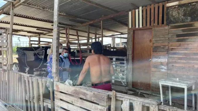 Encontraron a niños viviendo en pesebreras de Cartagena